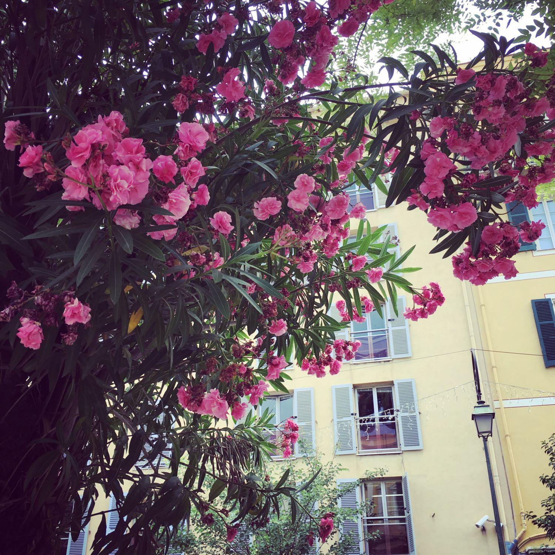 1607_vacances_corse_ajaccio_centre_1