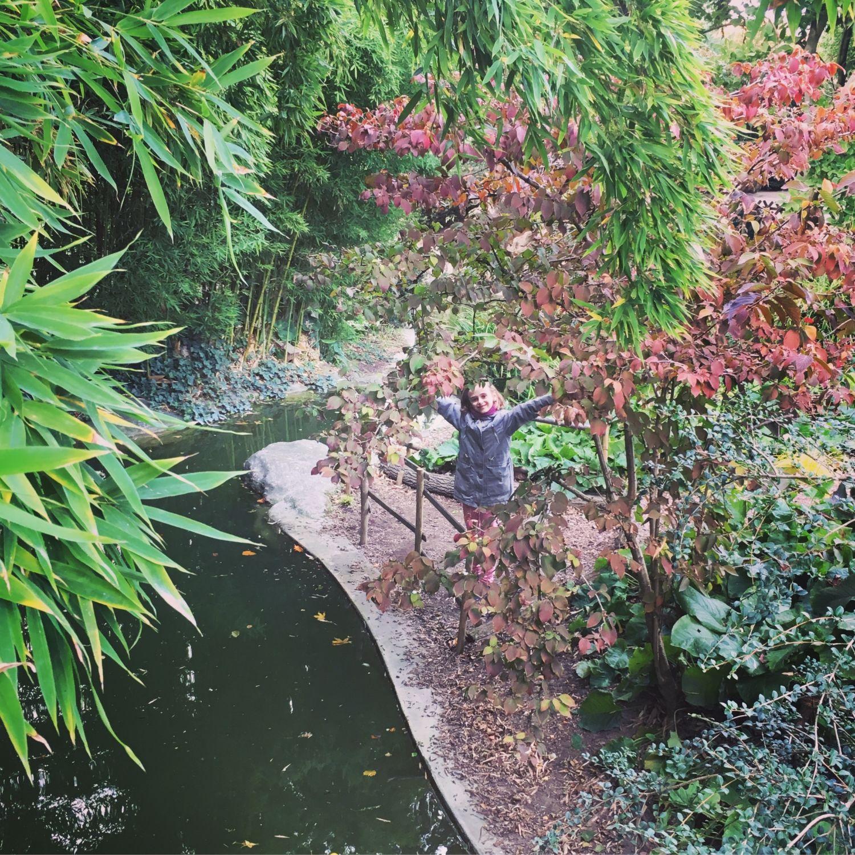 1610_automne_alice_jardinplantes
