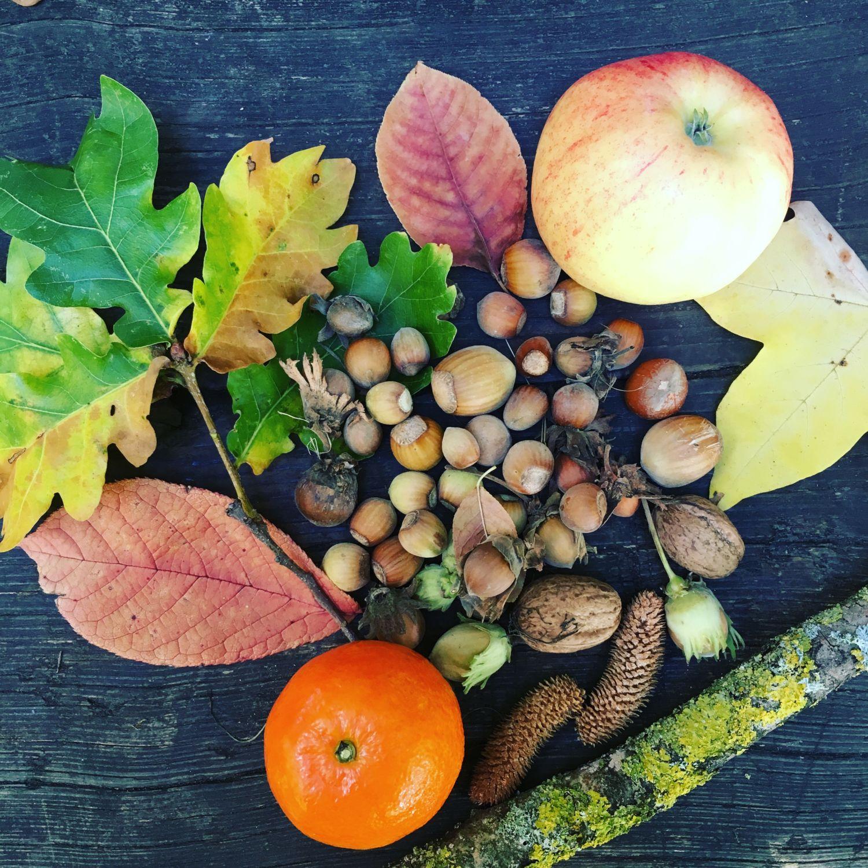 1610_automne_coulee-verte_ciel_gouter