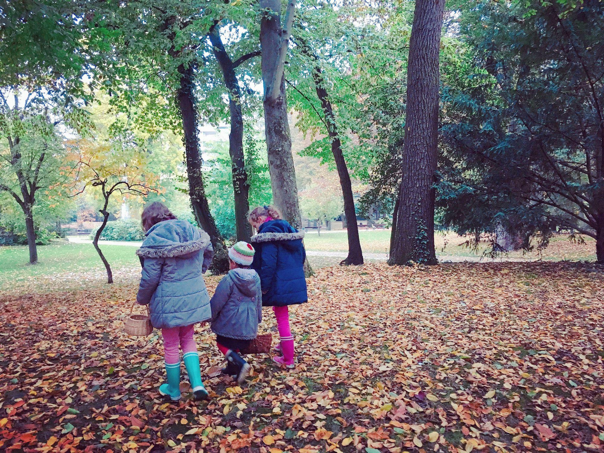 1610_automne_jardin-plantes_cousines_1