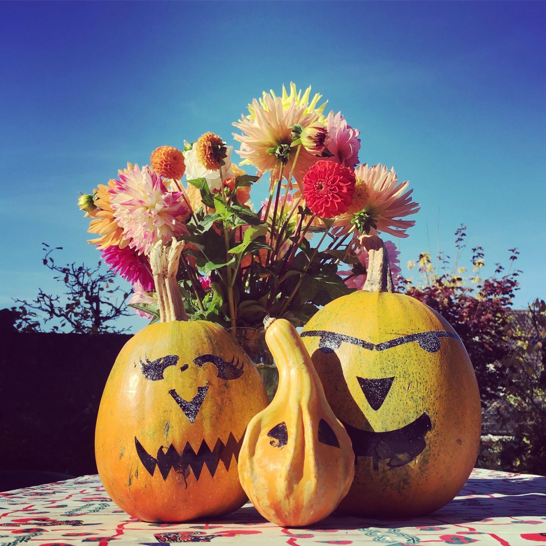 1610_automne_jardin_halloween_citrouilles