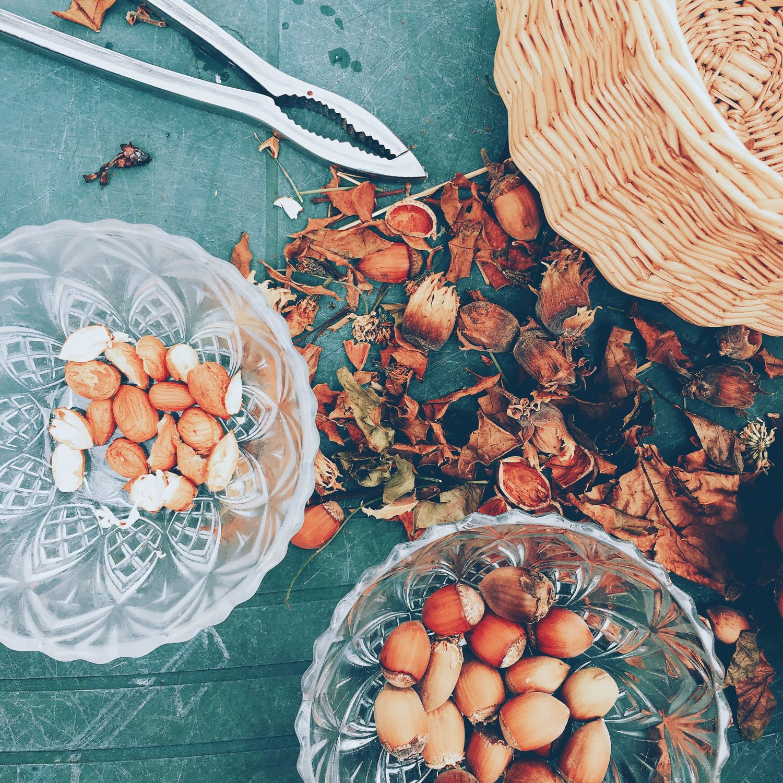 1610_automne_table_jardin_noisettes