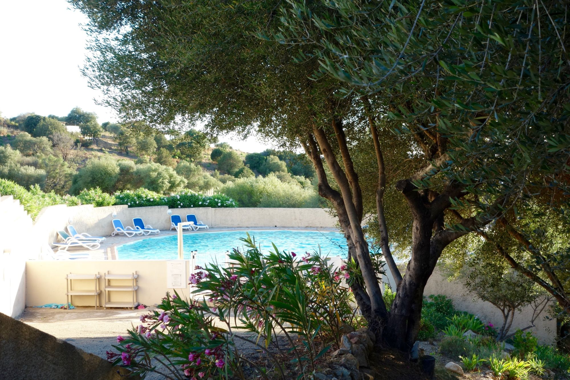 1607_vacances_corse_piscine_4