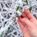La neige est tombée sur Angers!