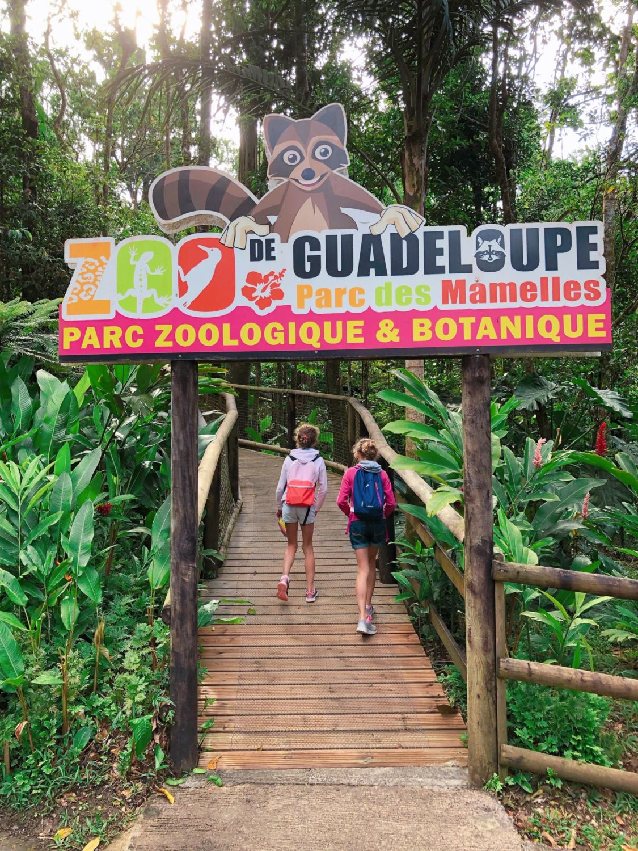guadeloupe - zoo des mamelles - entrée