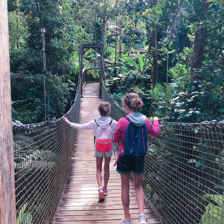 guadeloupe - zoo des mamelles - passerelle