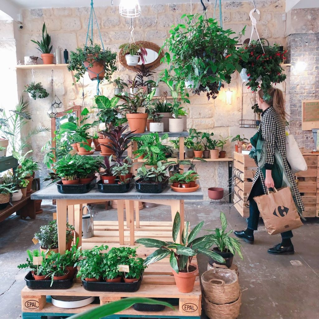 Welcome Bio Bazar - Paris - jardinerie